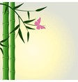 bamboo butterfly background vector image vector image