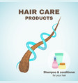 hair care vector image