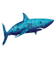 polygonal shark vector image