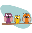 Funny owls family vector image