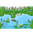 Pond vector image