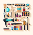 Tools for makeup vector image vector image
