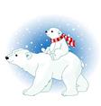 polar bear mom and baby vector image