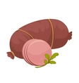 meat sausage vector image