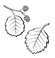 Alder Leaves Pictogram Set vector image