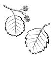 Alder Leaves Pictogram Set vector image