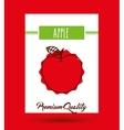 delicious fruit design vector image