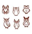 Set of cartoon owls vector image
