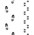 shoes and paws vector image