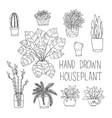 big set of hand drawn houseplants monstera bamboo vector image