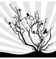 birds on the branches vector image