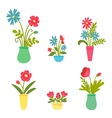 Set of flowers in vases vector image vector image