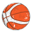 retro basketball ball vector image