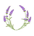the lavender garland vector image vector image