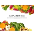 Fruit mix with leaves on white background vector image