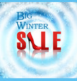 banner big winter sale poster vector image