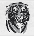 watercolor drawing of angry looking tiger animal vector image