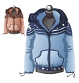 Womens blue winter warm sports jacket vector image