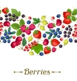 Seamless nature pattern with berries vector image