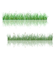 Green grass patterns with reflections vector image vector image
