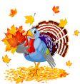 cartoon turkey with autumn bouquet vector image
