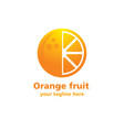 orange fruit logo vector image