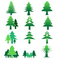 pinetree color icon collection preview vector image