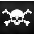 Human evil skull on black background Jolly vector image