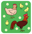 Funny chicken family vector image