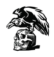 Raven and skull vector image