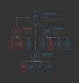 company hierarchy diagram template vector image