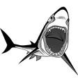 Shark fish head symbol for mascot vector image