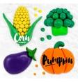 Plasticine vegetables pumpkin vector image vector image