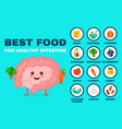 best food for strong intestine vector image