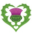 Scottish Heart and Thistle vector image