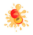 sliced ripe peach juice splashing colorful fresh vector image