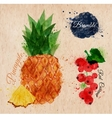 Fruit watercolor pineapple bramble red currant