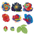abstract rainbow roses vector image