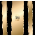Gold and black torn paper vector image
