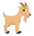 of cartoon goat vector image