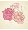 Three roses in vintage colors background vector image