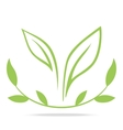 Green leafs and laurel wreath - sign vector image