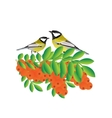 Tits on a branch with sea buckthorn vector image