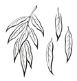 Willow Leaves Pictogram Set vector image