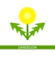 dandelion icon vector image