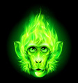 Monkey fire head vector image vector image