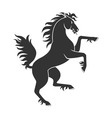Black Rearing Horse vector image