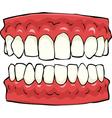 false teeth vector image