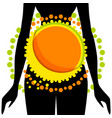 silhouette of woman with abstraction on stomach vector image