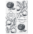 banner set with hand drawn branch of of vector image
